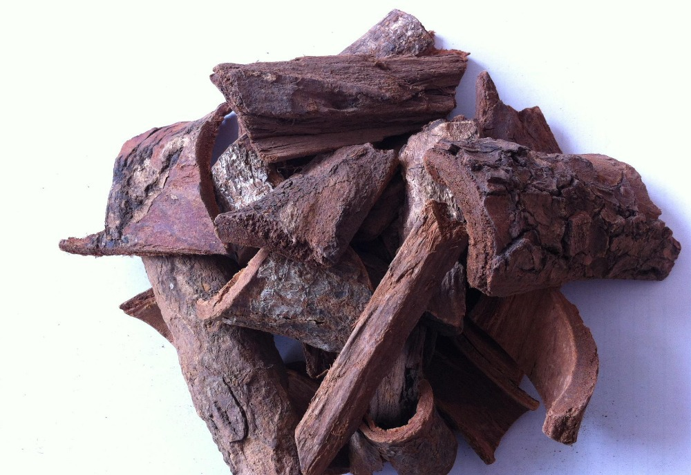 CITES Certified Pygeum Africanum Extract Powder/Pygeum Bark Extract