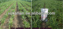45% Organic fertilizer for improve agricultural growth yield