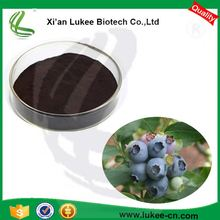 Hight Quality Bilberry/Frozen Bilberry/ Blueberry Extract