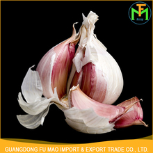 China Exporters Supply Hot Sale Buy 4.5Cm 5.0Cm Natural Fresh Solo Red Garlic