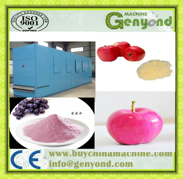 Apple juice powder processing line