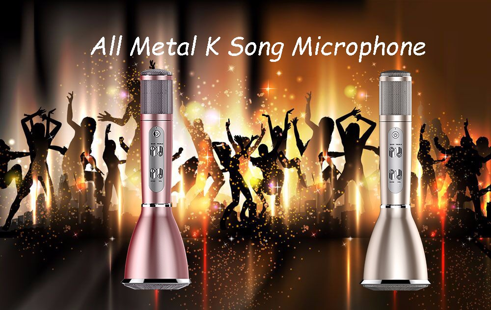 Wireless rechargeable Bluetooth Speaker with karaoke microphone for singing and music playing