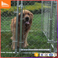New design hot sale strong galvanized wire large outdoor dog kennels