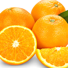 Best Quality Fresh Organic Valencia Orange