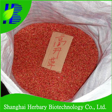 High budding rate Sorghum Sudan grass seeds for both pasture and for lawns