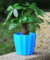 Home decorative large garden pot| planter pot| garden flower pot