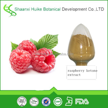 Natural raspberry ketone extract 10:1