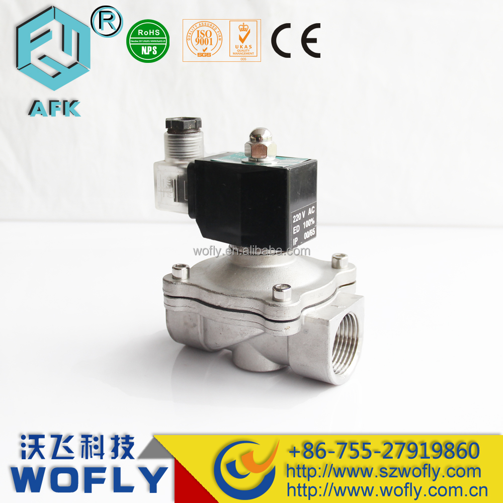 2 way natural gas micro electric solenoid valve