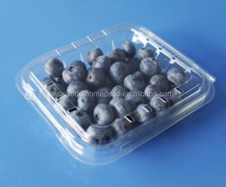125g blueberry box fgor packaging, Custom plastic fruit container