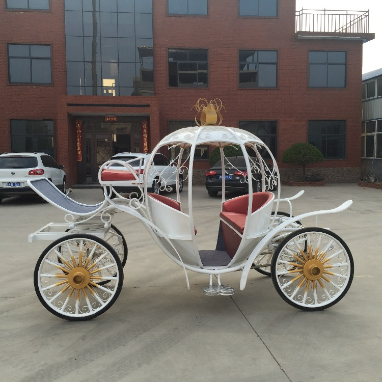Popular Used Wedding Horse Pumpkin Horse Luxury Hose Drawn Carriage Horse Carriage For Sale