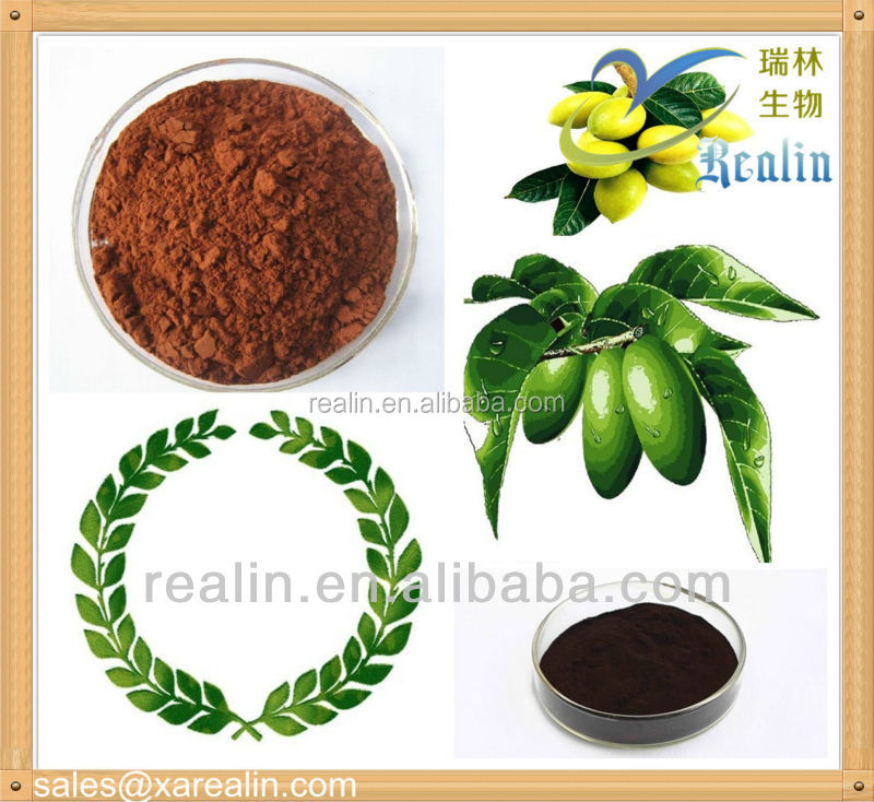 High Quality herb extract powder Hydroxytyrosol 10% natrual oleuropein olive leaf extract 10%,40% ,60%