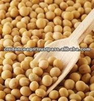 Soybean Price From India