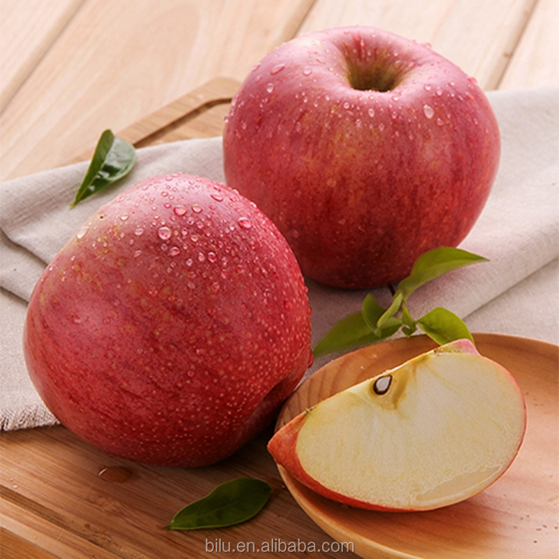 Low Price Fresh Red Qinguan Apple Fruits Export India