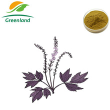 Factory Price Herbal Extract 100% Natural Black Cohosh Extract with 2.5-5% Triterpene Glycosides