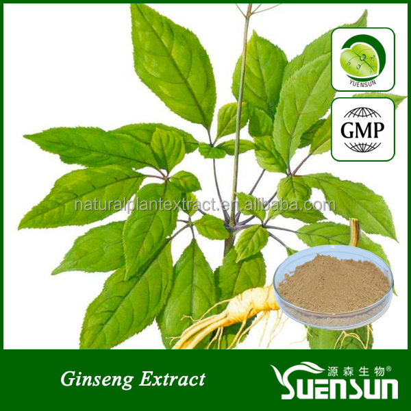100%natural and low price ginseng extract powder