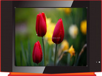 "RGB 14""-21"" CRT TV/14 inch -21 inch CRT TV/PURE FLAT & NORMAL FLAT"