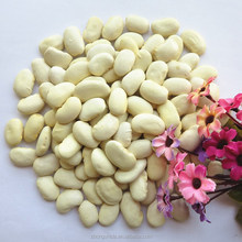 new crop White Kidney Beans export in china / Big White Kidney Beans Wholesales
