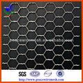 High Quality Hexgonal wire mesh ( Professional Manufacturer )