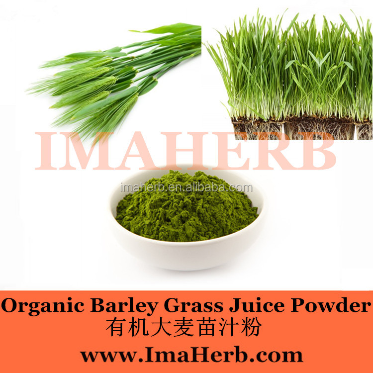 Made in China Natural barley grass powder capsules