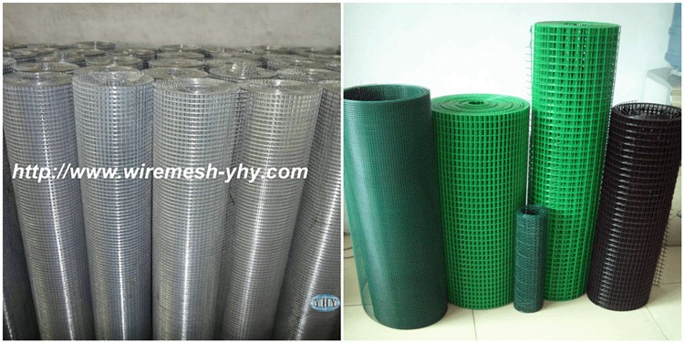 25mm holes 1mm galvanized wire 1m * 25m rolls Galvanized Welded Wire Mesh