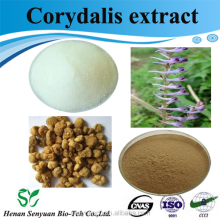 Supply natural herb plant Corydalis P.E. / corydalis extract powder 80% with low price