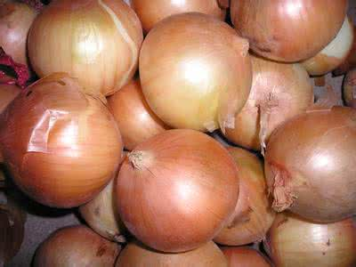 Chinese Fresh Yellow Onion