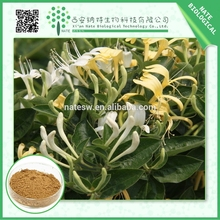 Anti Tumor HoneySuckle Flowers Extract