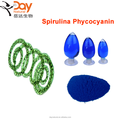 top quality phycocyanin spirulina powder extract