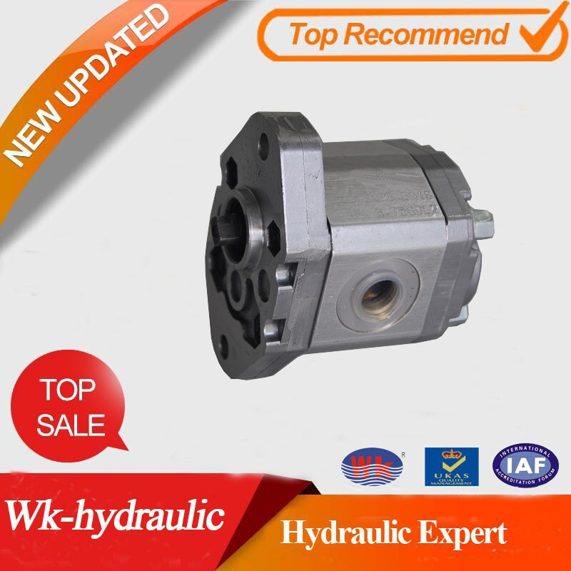 Hydraulic gear pump of WK-Hydraulic P/N:WKP0.5A1** replace Marzocchi
