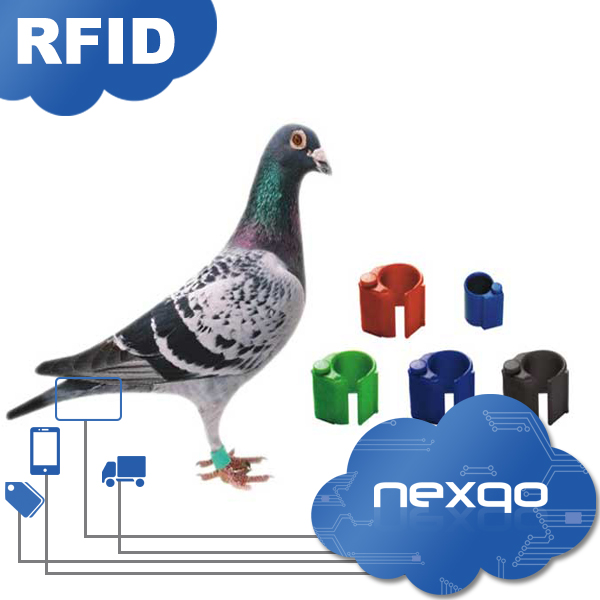 134.2KHZ RFID ring tag ,band pigeon ring for pigeon tracking