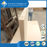 Panel Wood Style and Plywood Panel Type Laminated birch plywood from Jincheng Wood Co., Ltd