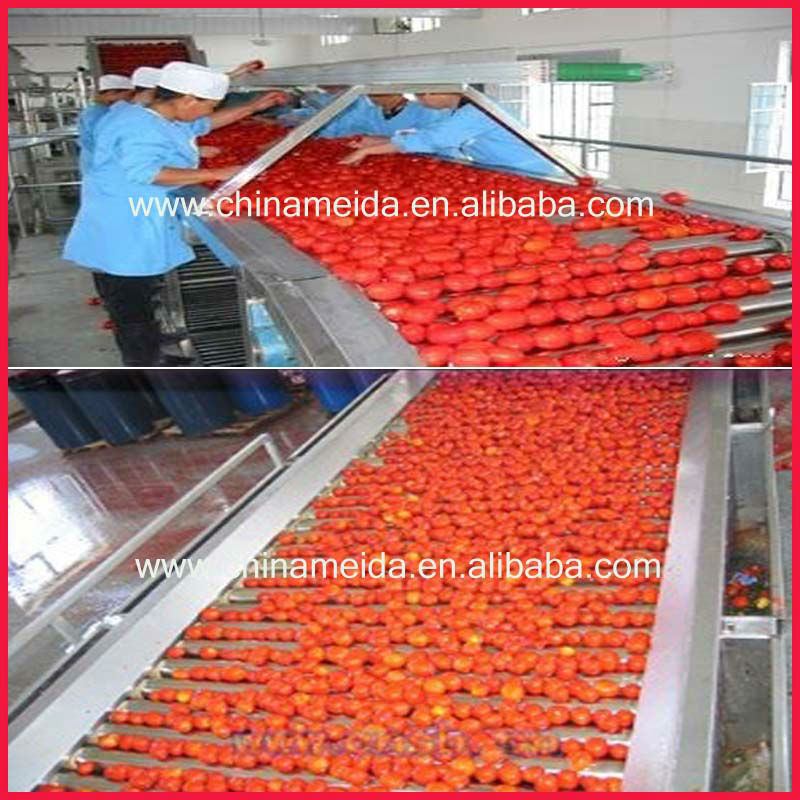 Hot Sale Electric Stainless Steel Automatic tomato sorting machine/vegetable sorting machine/fruit sorting machine Low Price