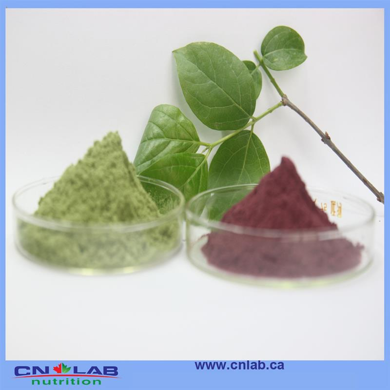 Reasonable supplier from China best acai berry products good supplier from China