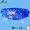 1.2 m customized promotional power kite