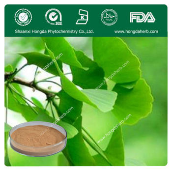 Factory Provide Ginkgo Biloba Herbal Extract