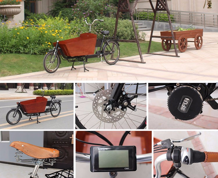 36V two wheel electric cargo bike family