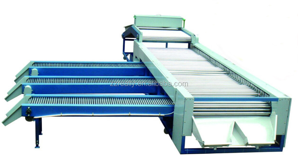 tomato grader machine/rotary type onion grader/potato sorting machine