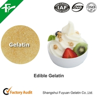 Gelatin Powder for desserts