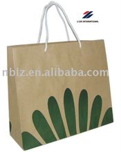 Promotion raw materials of advertising paper bag