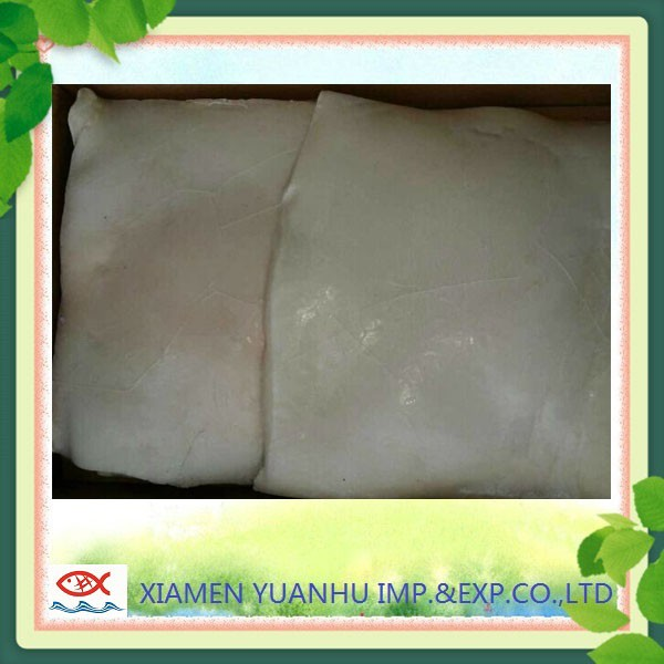 frozen giant squid fillets