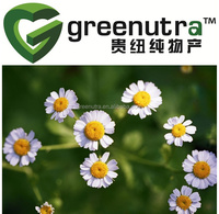 100%natural german chamomile Extract,Manufacturer german chamomile Extract,Manufacturer Supply High Quality german chamomile Ext