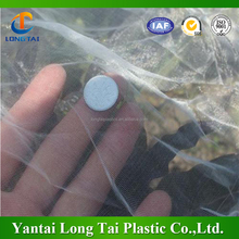 China cheap price pe plastic anti insect net, anti aphid net for greenhouse garden