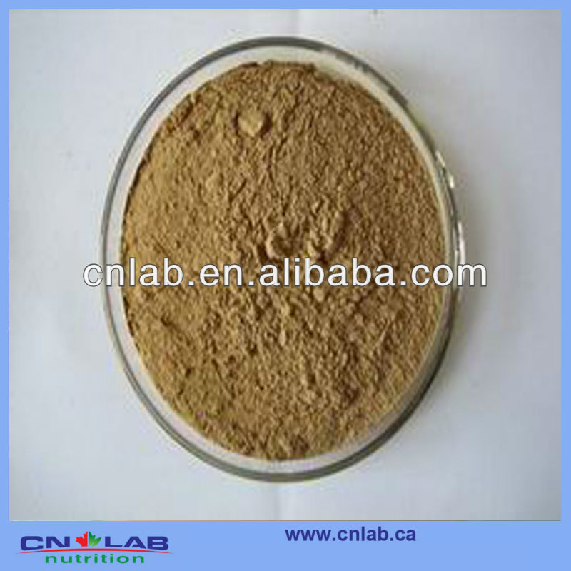 GMP factory Herba Hedyotidis Diffusae Extract