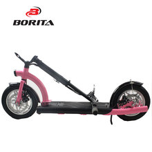 36V 300W Folding Adult Stand Up Electric Scooter