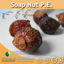 3W supply Soap Nut P.E. (100% Natural Product)