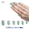 fengshangmei nail art eco-friendly acrylic nail tips new arrival color tips for nails