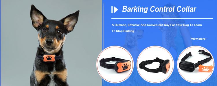 Factory Wholesale High Quality Pet Training Dog No Bark Collar TZ-PET681S