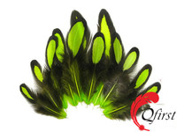 Unique design chicken plumage dyed lime green laced hen loose saddle feathers for sale