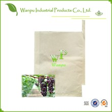 grape paper bag
