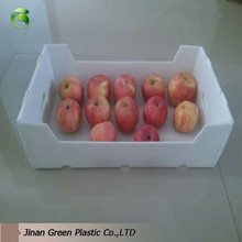 High Quality Correx PP Corrugated Apple Fruit Packaging Boxes